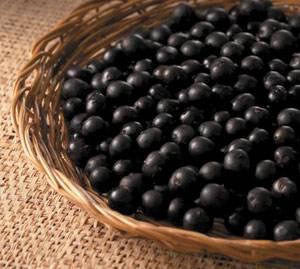アサイーとはどんなフルーツ?味と効果効能は?欠点はあるの?