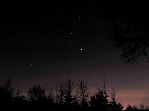 冬の星座オリオン座を観測!大三角はいつ見える?
