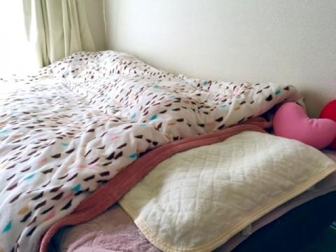 布団乾燥機でダニ退治はできる?効果的な方法とは?