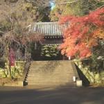 京都の嵐山で十三参り!祈祷料の相場、服装、アクセスは?