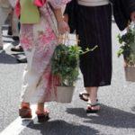 入谷の朝顔市2016の開催日と時間は?値段はいくらくらい?