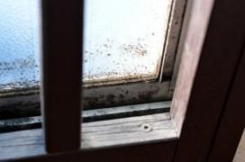 窓の黒カビ
